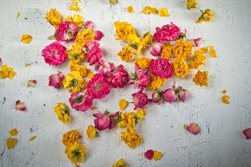 Dried flowers and petals of roses on wooden table