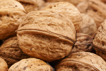large fresh walnuts