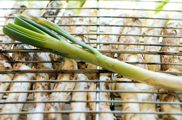 Tender grilled onions