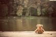 Teddy bear - 71854100