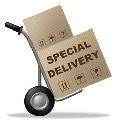 Special Delivery Indicates Shipping Box And Cardboard