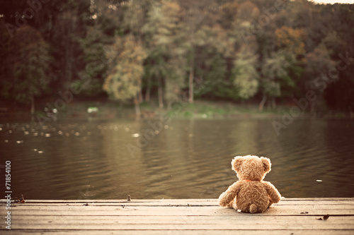 Teddy bear - 71854100