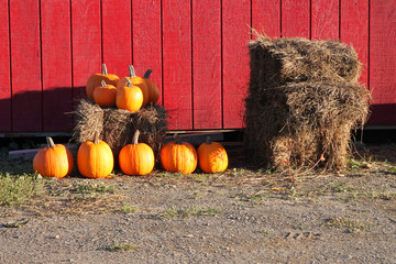 Pumpkins and haybales outdoors