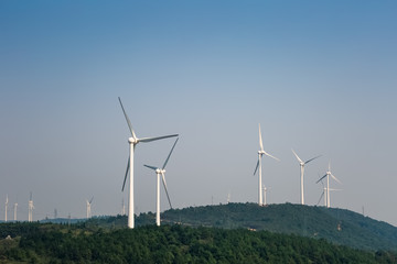 wind farm - new energy