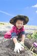 芋掘りをする子供