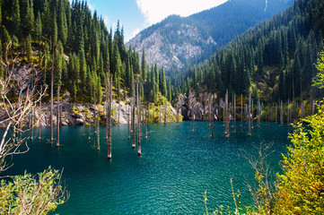 Kaindy Lake in Tien Shan mountain, Kazakhstan.