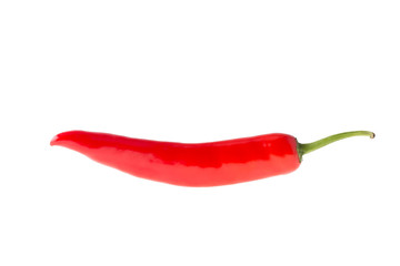 pepper red isolated