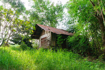 abandoned house in the green garden, thailand