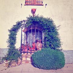 Windows of Tuscany