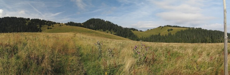 pasture near Siprun in Velka Fatra mountains in Slovakia