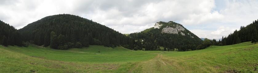 pasture near Malino Brdo in Velka Fatra mountains in Slovakia
