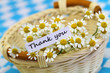 Thank you card with wicker basket full of chamomile flowers