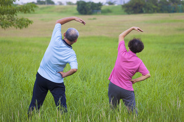 Senior couple doing gymnastics in the park.healthy concept