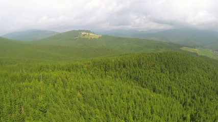 mountain   with wood   .Aerial  shot in summer day