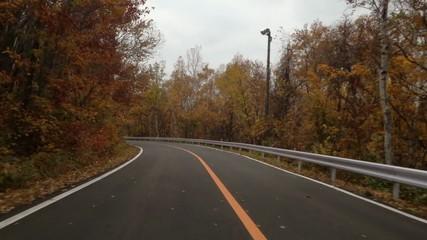 紅葉最盛期の観光道路を下る車窓映像