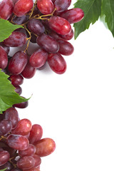 Bunch ripe, fresh red grapes with leaves.