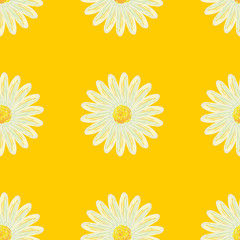 Seamless daisies pattern