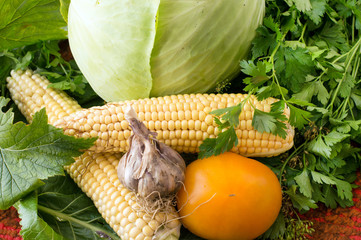 Fresh vegetables - garlic, corn, cabbage, tomatoes from the gard