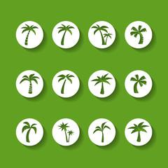 coconut tree circle icon set, sticker version, vector eps10