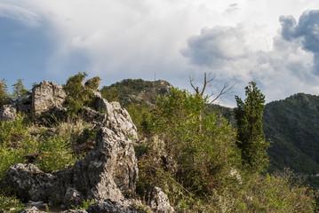Hillside (mediterranean vegetation)