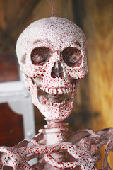 axial skeleton and  blood with smiling , halloween decoration