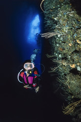 Italy, cave diving, diver and yellow gorgonians