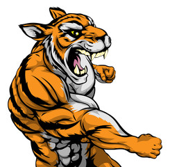 Punching tiger mascot