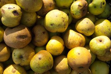 Pommes abimées