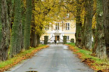 Avenue to manor