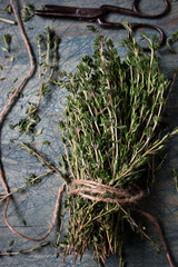Thyme bunch with a cord on the blue table