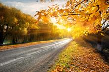 "Постер, картина, фотообои ""Highway and autumn"""