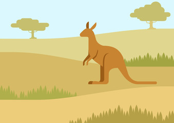 Kangaroo in the natural habitat flat cartoon vector wild animal
