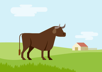 Bull farm grass field habitat flat design cartoon vector animal