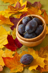 Fresh plums in a wooden suit on a background of autumn leaves