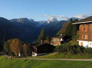 Morning in Braunwald