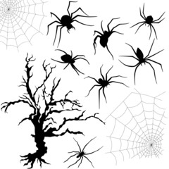 Halloween set of spiders, nettings and dried tree