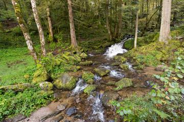 Ruisseau St-Nicolas