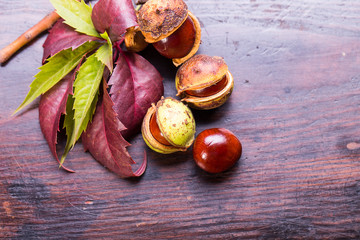 Decorative autumn border with chestnuts