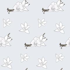 Vanilla pattern