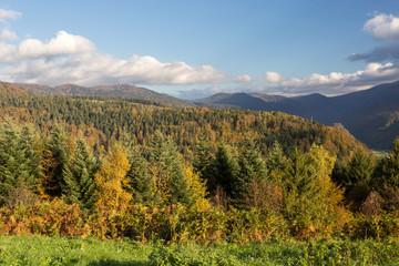 Forêt et sommets des Vosgses en autonme