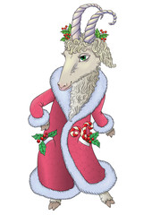 Goat in Santa coat