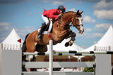 Fototapety Equestrian
