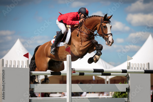 Foto op Canvas Paardensport Equestrian