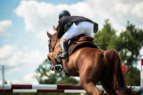 Poster Paardensport Equestrian
