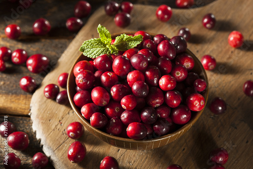 Poster Raw Organic Red Cranberries