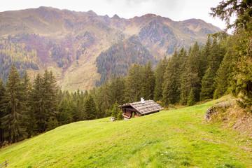 Almhütte auf der Bergwiese am Waldrand