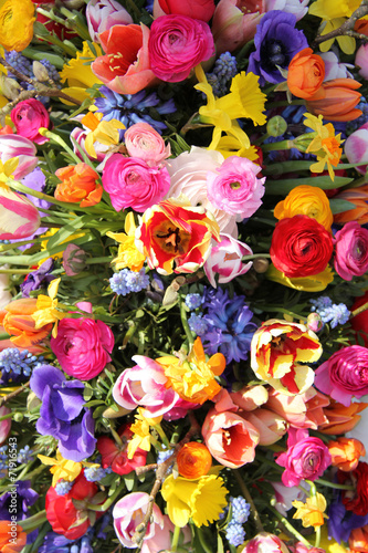Staande foto Narcis Spring flowers in bright colors