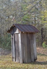 Old Weathered Outhouse with Rusting Tin Roof