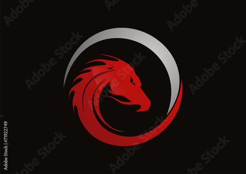 Dragon red logo vector - 71922749