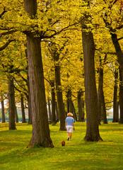 Walking Dog in Park